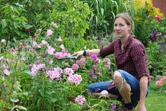 trädgårds- kvinnaarbeten Royaltyfria Foton