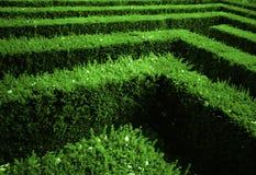 trädgårds- labyrint royaltyfria bilder