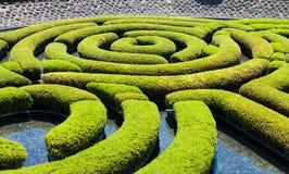Trädgårds- labyrint Arkivbilder