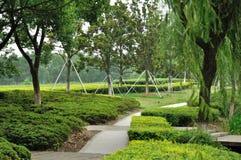 trädgårds- lake Arkivbild