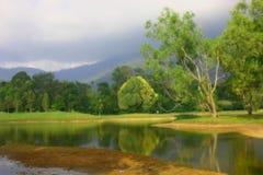 trädgårds- lake Royaltyfria Foton