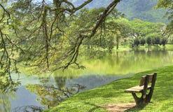 trädgårds- lake taiping royaltyfri fotografi