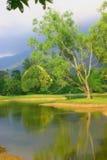 trädgårds- lake taiping Arkivbilder