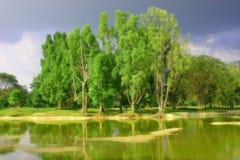 trädgårds- lake taiping Fotografering för Bildbyråer