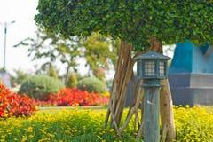 Trädgårds- lampa Arkivbilder