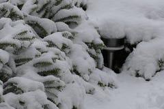 Trädgårds- lampa under snö arkivbild