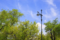 trädgårds- lamplampa Arkivbild