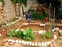 trädgårds- landman som förbereder skjulet Royaltyfria Bilder