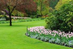 trädgårds- landskap Fotografering för Bildbyråer