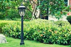Trädgårds- landskap ljus för tappning Royaltyfri Bild