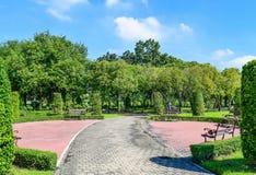 Trädgårds- landskapdesign Arkivbild