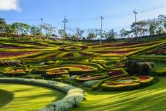 Trädgårds- lanscape Arkivbild