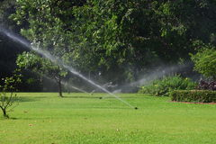 Trädgårds- lawn bevattnar sprinkleren. royaltyfria foton