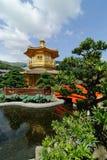 trädgårds- lian nan Royaltyfria Bilder