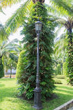 trädgårds- lighting arkivbild