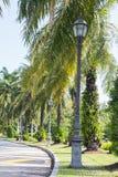 trädgårds- lighting royaltyfri bild