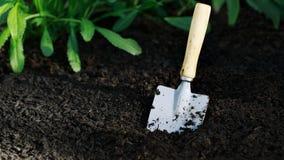 Trädgårds- liten skyffel i grönsakträdgård Arkivbilder