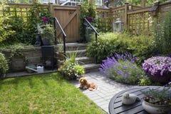 trädgårds- litet arkivfoto