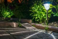 Trädgårds- ljus för sol- lyktor med buskar arkivbild