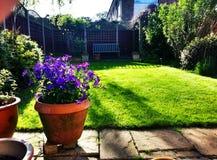 Trädgårds- lugn Arkivbilder