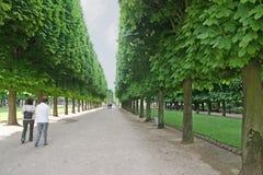 trädgårds- luxembourg bana arkivbild