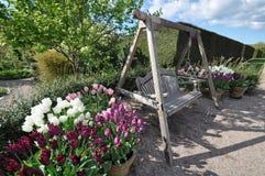 Trädgårds- möblemang royaltyfri fotografi