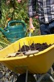 trädgårds- manskottkärraworking arkivbild