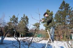 trädgårds- manworking royaltyfri fotografi