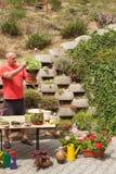 trädgårds- manworking Trädgårdsmästaren förskjuter blommor Royaltyfri Foto