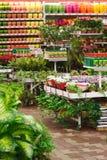 trädgårds- marknad royaltyfria foton