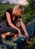 trädgårds- nätt kvinna Royaltyfria Bilder