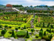 trädgårds- nongnooch Royaltyfri Foto