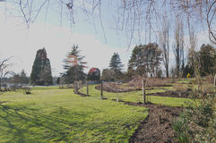 trädgårds- nytt fotografering för bildbyråer