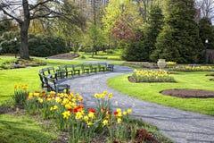 trädgårds- offentlig springtime arkivbild