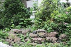 Trädgårds- ordning för sommar Royaltyfri Fotografi