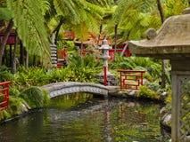 trädgårds- orientaliskt Arkivbilder