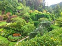 Trädgårds- paradis Royaltyfri Bild
