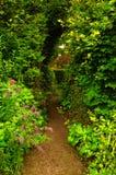 Trädgårds- passage Arkivfoton