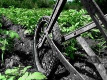 trädgårds- ploga upp Arkivbilder