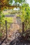 trädgårds- port Royaltyfria Bilder