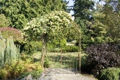 Trädgårds- port med härliga blommor royaltyfria bilder