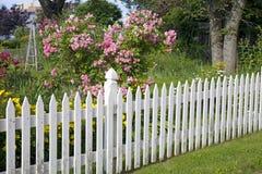 Trädgårds- posteringstaket Arkivfoto