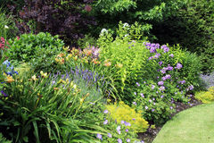 Trädgårds- rabatt Royaltyfri Foto
