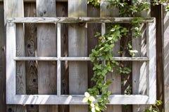 trädgårds- ram Arkivbilder