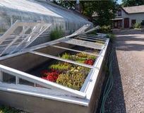 Trädgårds- ram och växthus arkivbilder