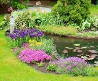 trädgårds- regn Arkivbild
