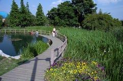 trädgårds- running vatten Royaltyfria Foton