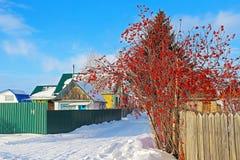 Trädgårds- samhälle med byggnader av de sovjetiska tiderna Arkivbild