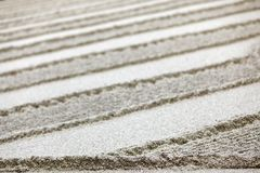 trädgårds- sandzen Fotografering för Bildbyråer