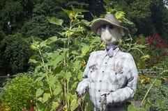 Trädgårds- Scarecrow Arkivbild